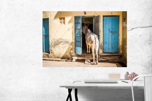 Wandbild Indien