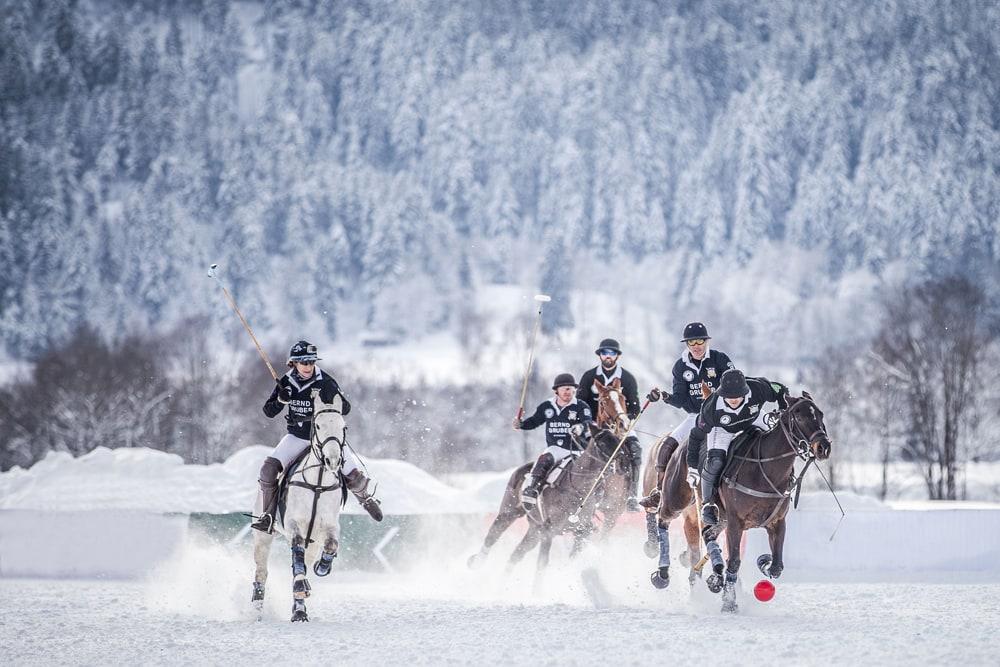 Snow Polo Pferde & Schnee