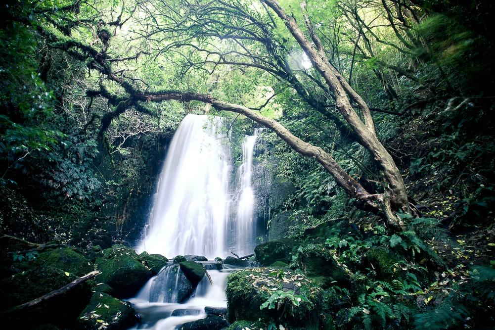 Matai Falls Neuseeland