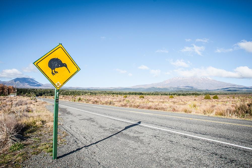 Straßenschild Kiwi im Tongariro Nationalpark Neuseeland