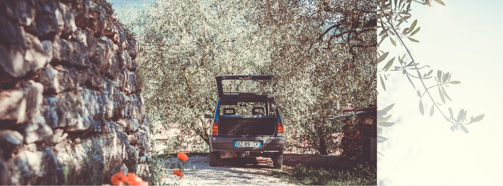 alter Fiat Panda in den Olivenhainen von Arco