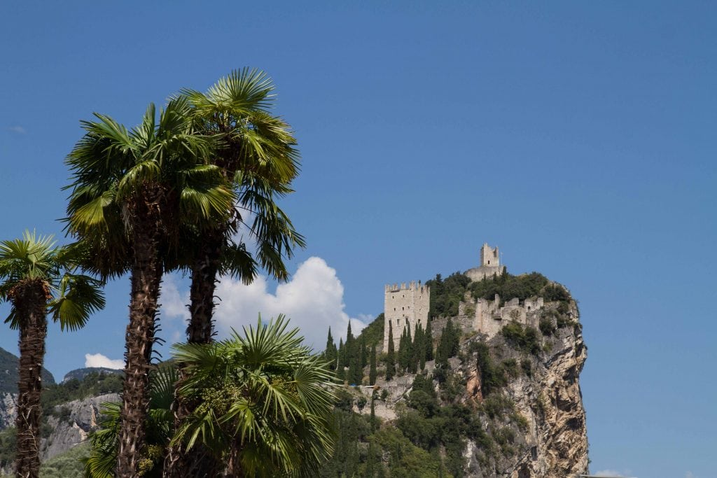 Burg Arco mit Palmen