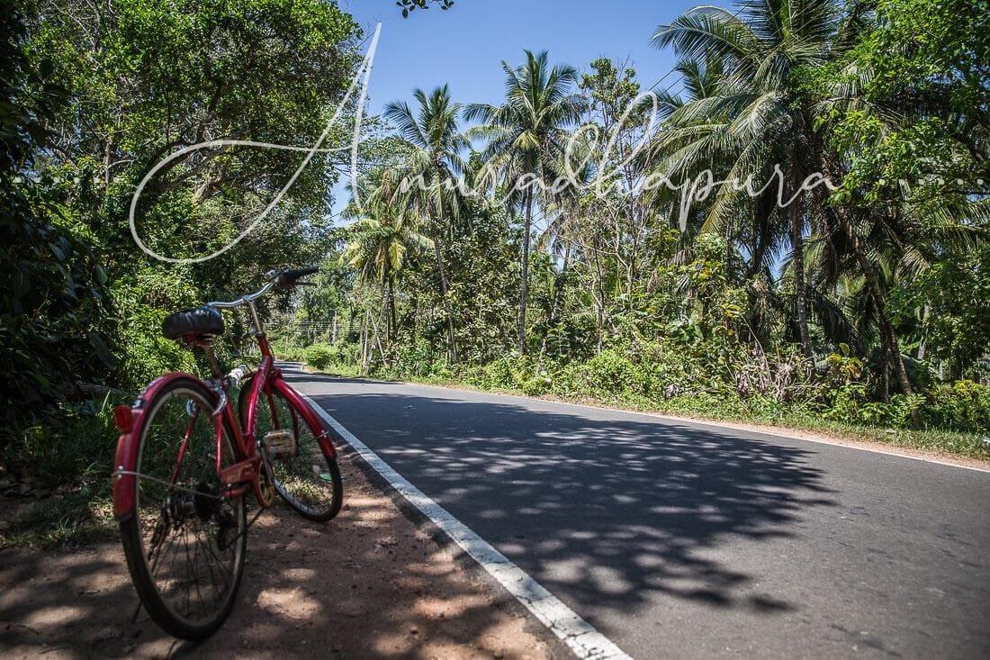 Anuradhapura – Eine Tuk Tuk Fahrstunde