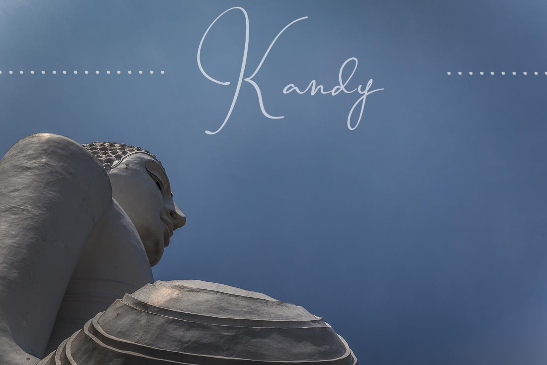 Kandy – Ein Elefant auf der Ladefläche