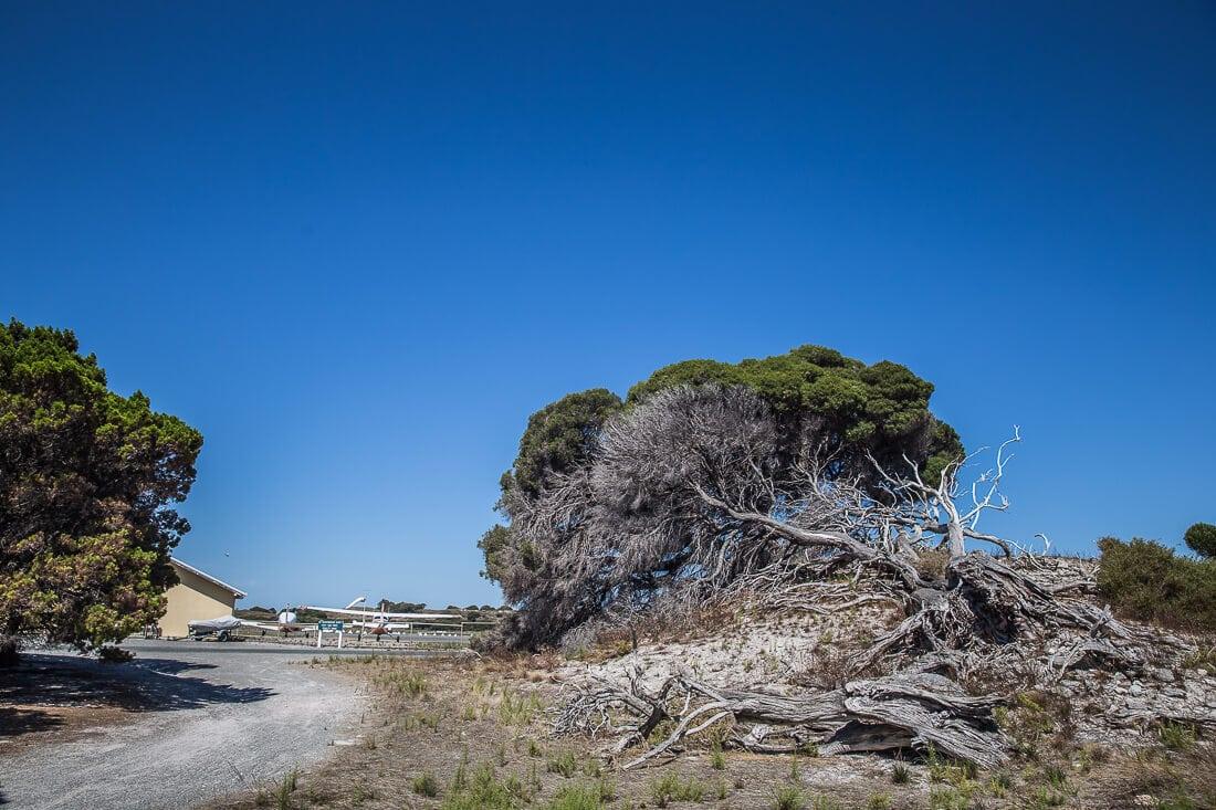 Flughafen Rottnest Island