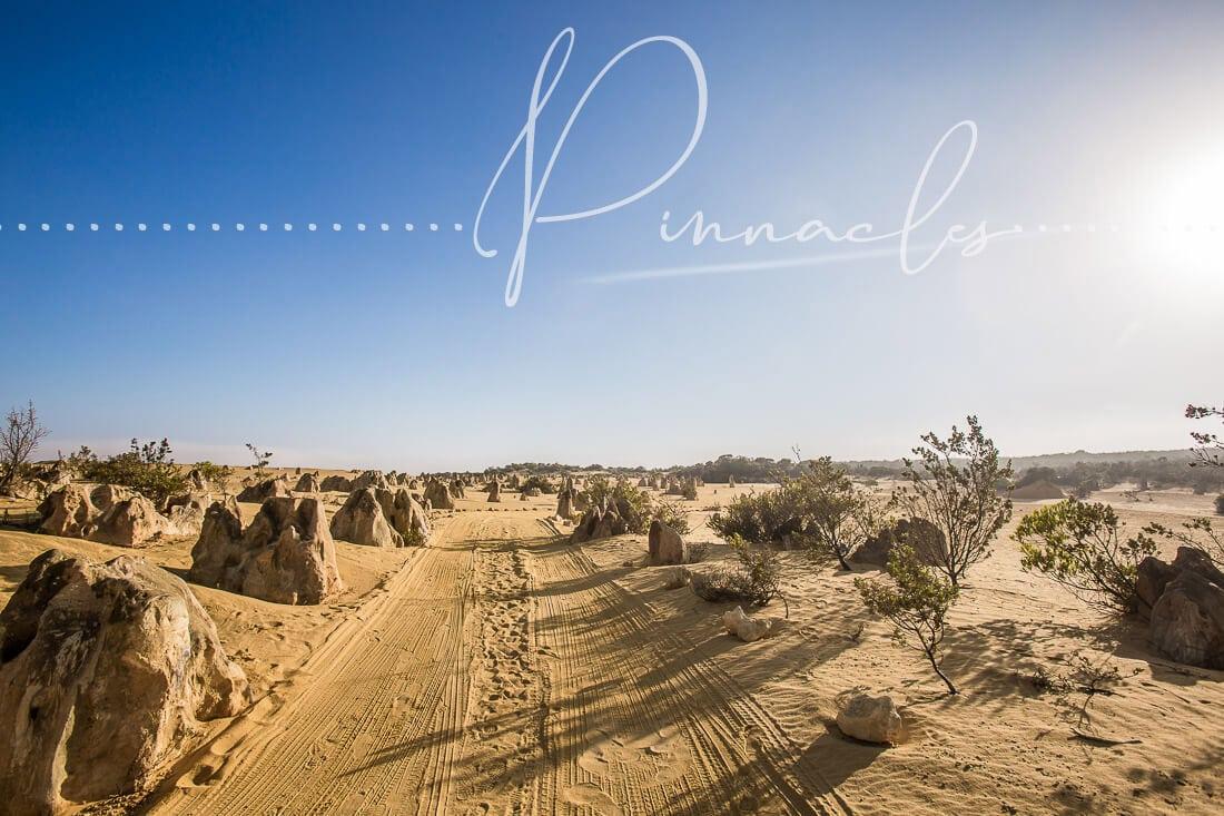 Pinnacles – Einmal zum Mond und zurück ans Meer