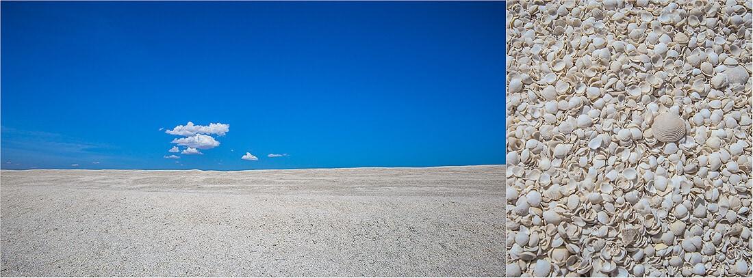 Shell Beach Muscheln in West Australien