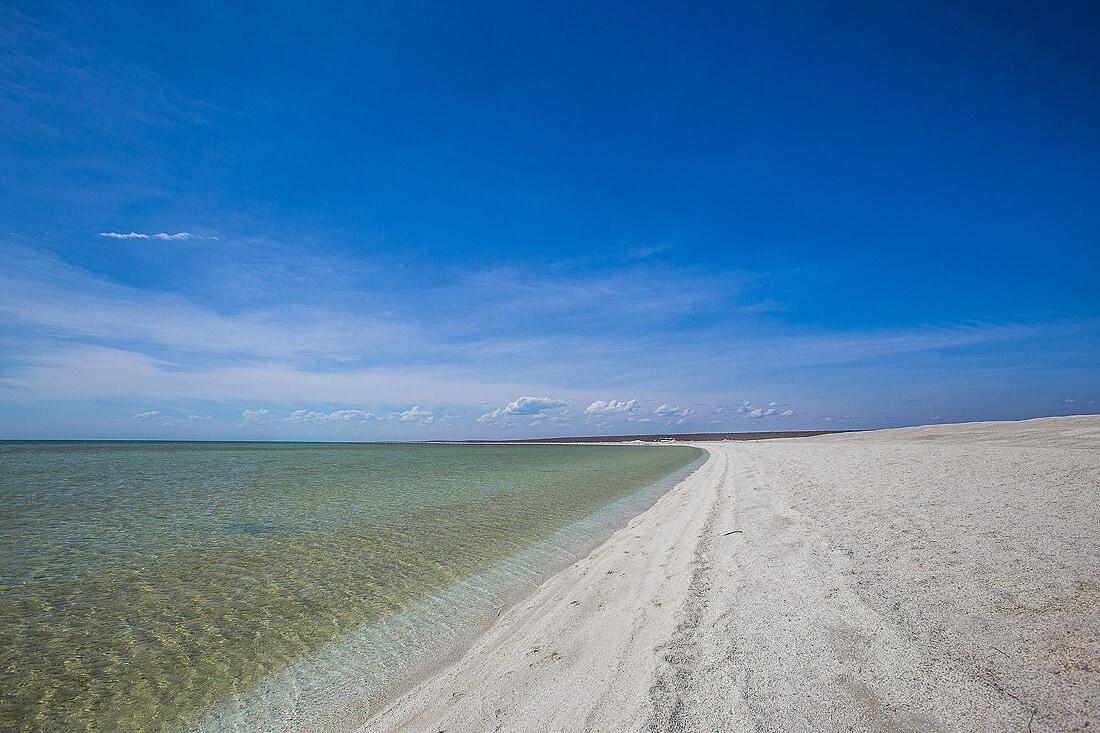 Shell Beach Meer und Strand von Australien