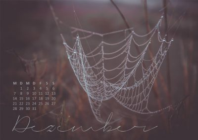 Kalender 2020 Australien - Dezember