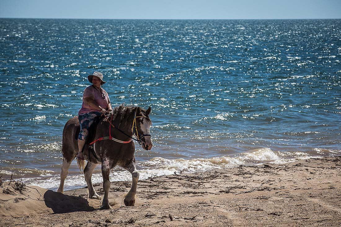 Pferd und Reiterin am Meer
