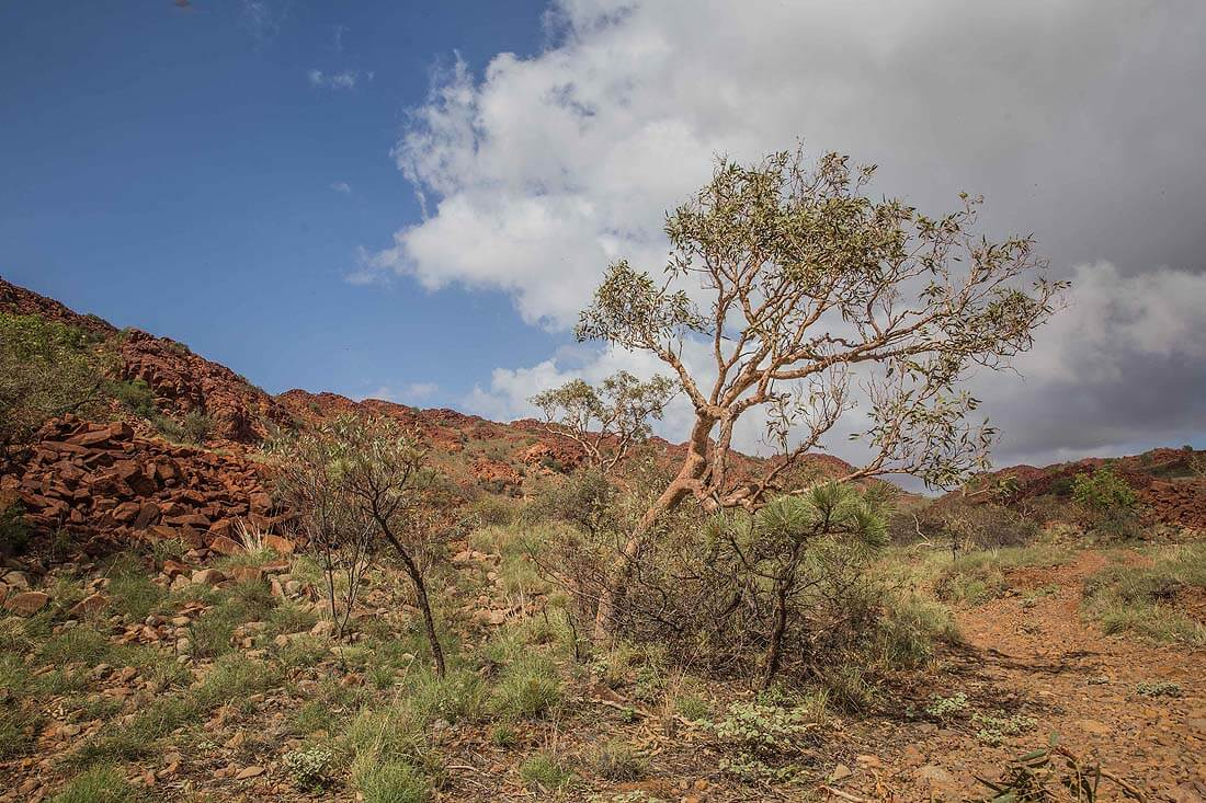 Deep Gorge Nationalpark in Karratha West Australien