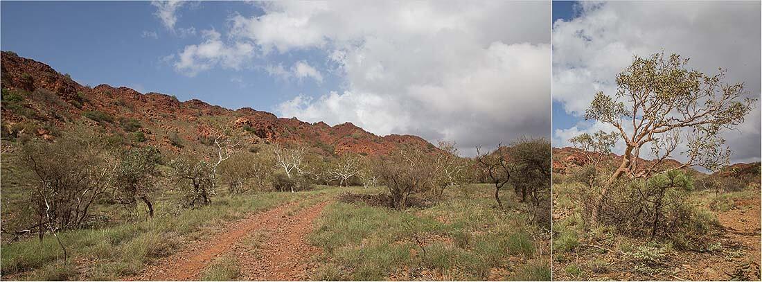 Landschaft von Murujuga-Nationalpark Dampier