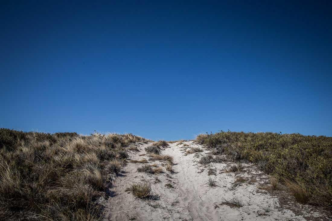 Düne auf Rottnest Island