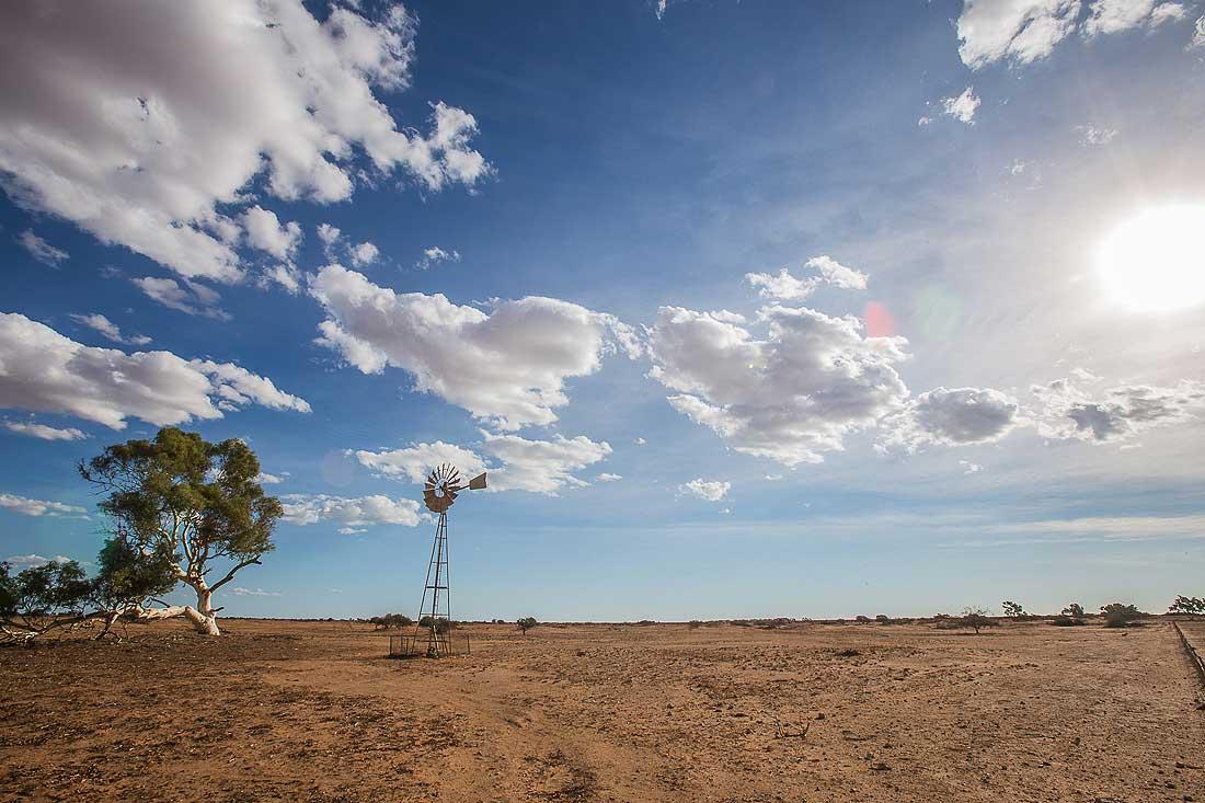 Windrad bei Wooramel West Australien